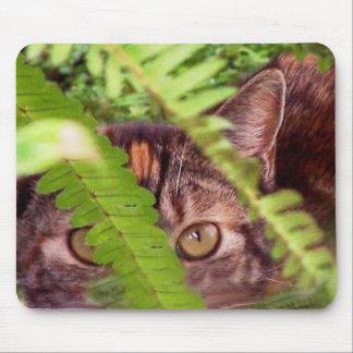 Vild tabby katt Mousepad för vild Musmatta