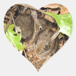 Vildbabykaniner Hjärtformat Klistermärke