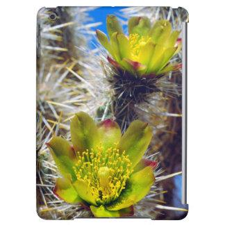 Vildblommar för silverCholla kaktus