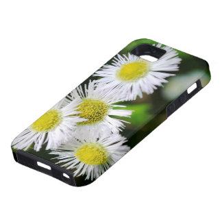 Vildblommar iPhone 5 Skal