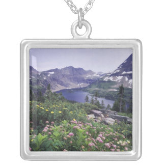 Vildblommar och gömd sjö som är shrubby silverpläterat halsband