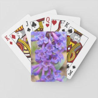 Vildblommar Spel Kort
