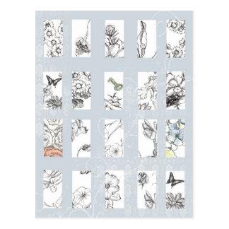 Vildblommar svärtar bläckpennan skissar botanisk vykort