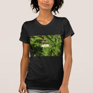 Vilddaisy med Ferns Tee Shirt