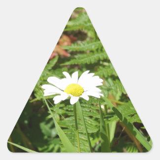 Vilddaisy med Ferns Triangelformat Klistermärke