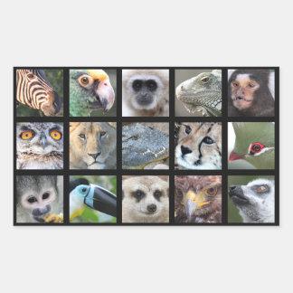 Vilddjuransikten -- Däggdjur reptilar, fåglar Rektangulärt Klistermärke