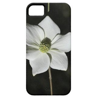 VildDogwoodblom i Yosemite iPhone 5 Case-Mate Fodral