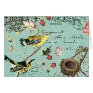 Vinage fransk fågelnotecard OBS kort
