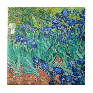 VINCENT VAN GOGH - Irises 1889 Liten Kakelplatta