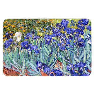 Vincent Van Gogh Irises blom- vintagekonst Magnet