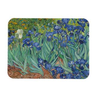 Vincent Van Gogh - Irises Magnet