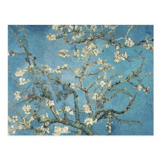 Vincent Van Gogh | mandelgrenar i blom, 1890 Vykort