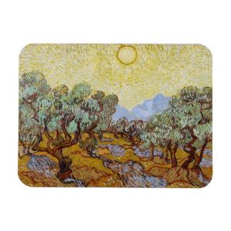 Vincent Van Gogh | olivträd, 1889 Magnet