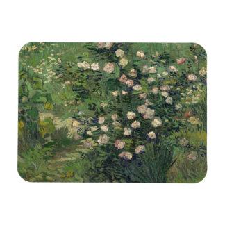 Vincent Van Gogh - ro Magnet