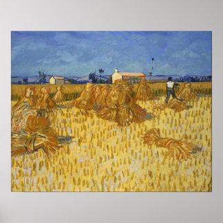 Vincent Van Gogh skörd i Provence Poster