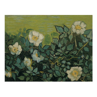 Vincent Van Gogh - vildro Vykort