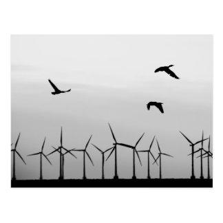 Vindlantgård och fåglar vykort