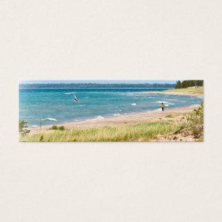 Vindsurfa på Lake Michigan Litet Visitkort