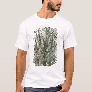 vine och grenar som vrids i rainforest t-shirt