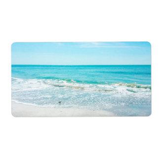 Vinkar Sandpiper för tropiskt hav för Florida Fraktsedel