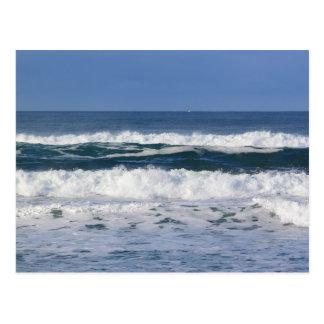 Vinkar vykort för Stilla hav