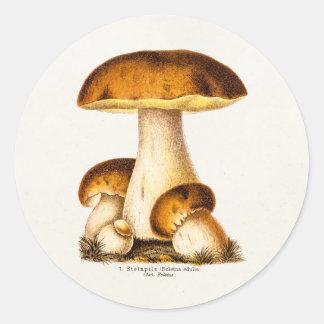 Vintage1800s plocka svamp den ätliga runt klistermärke