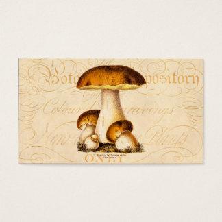 Vintage1800s plocka svamp den ätliga visitkort