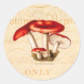 vintage1800s plocka svamp den röda runt klistermärke