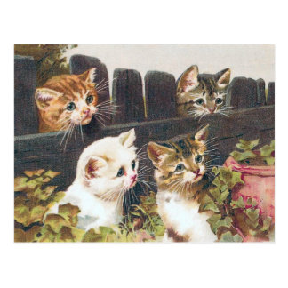 """Vintage """"för fyra kattungar"""" vykort"""