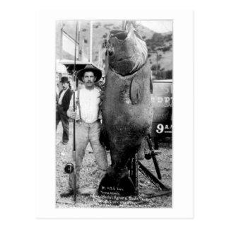 Vintage fotograferar av en man med den jätte- fisk vykort