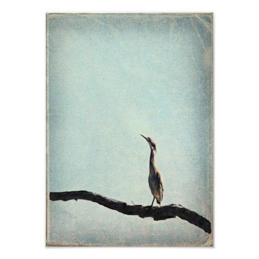 Vintage inspirerade den gröna heronen på bleken -  fotografiska tryck