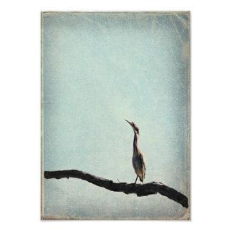 Vintage inspirerade den gröna heronen på bleken -  fototryck