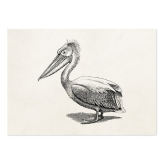 Vintage krönad antik fågelmall för pelikan set av breda visitkort
