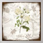 Vintage som botanisk konst skrivar ut ~-engelska,