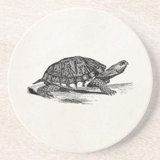 Vintageamerikanen boxas sköldpaddan - underlägg sandsten