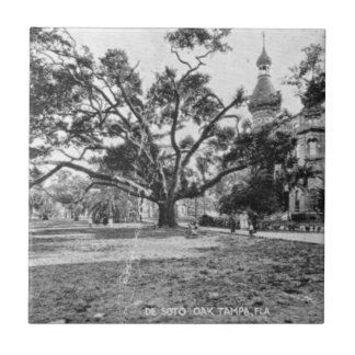 Vintagebilder av Tampa Florida Kakelplatta