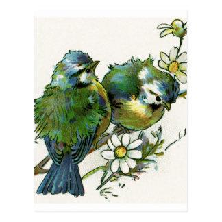Vintageblåttfåglar Vykort