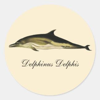 VintagedelfinDelphinus Delphis, marin- däggdjur Runt Klistermärke
