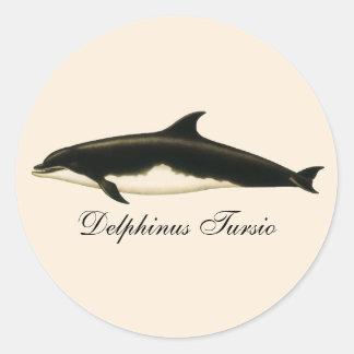 VintagedelfinDelphinus Tursio, marin- däggdjur Runt Klistermärke
