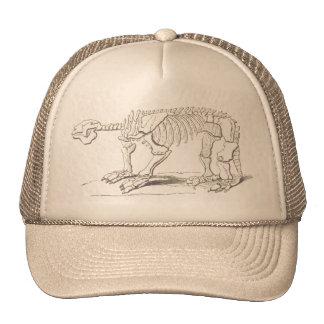 Vintagedinosauren benar ur hatten keps