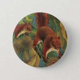 Vintageekorrar, skogvarelser, vilda djur standard knapp rund 5.7 cm