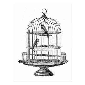 Vintagefågelbur med den fågel… vykortet vykort