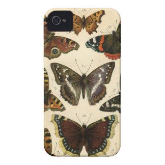 Vintagefjärilsillustration - björnbär iPhone 4 Case-Mate cases