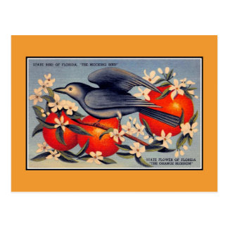 VintageFlorida statlig blomma, statlig fågel Vykort