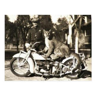 vintagefoto av polisen på motorcykelpuma vykort