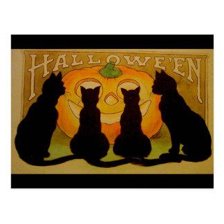 VintageHalloween svarta katter och jack O'Lantern Vykort