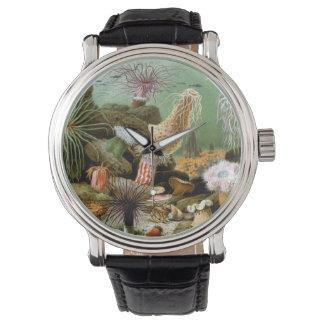 Vintagehavsanemoner, marin- livdjur armbandsur