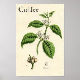 Vintagekaffeväxt Poster