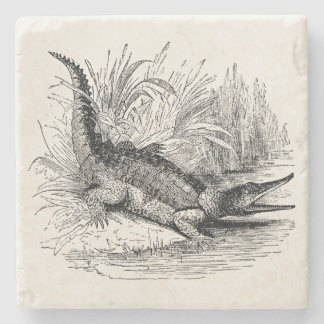 Vintagekrokodil - tom reptilmall underlägg sten