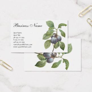 Vintagematfrukt, trädgårds- plommoner för lilor visitkort
